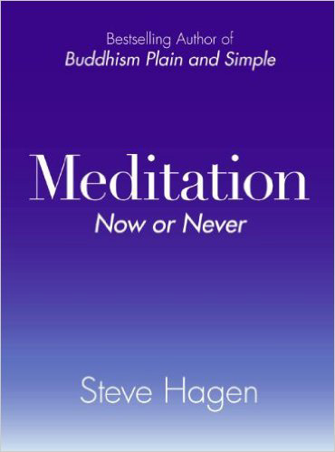 Steve Hagen - Meditation Now or Never